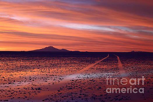 James Brunker - Journey in a Pink Dreamland