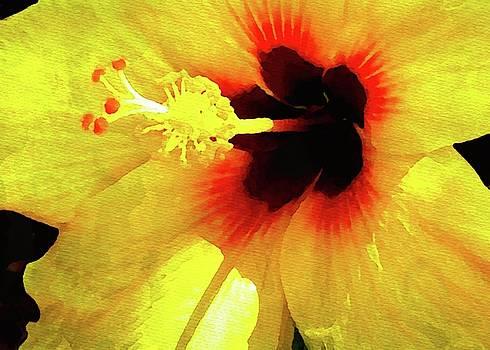James Temple - Joy Is My Name Digital Watercolor