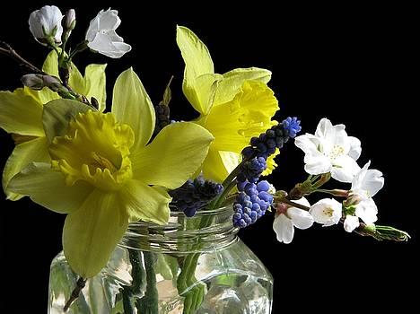 Joy Of Spring by Angela Davies