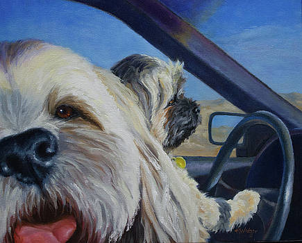 Joy Ride by Katy Widger