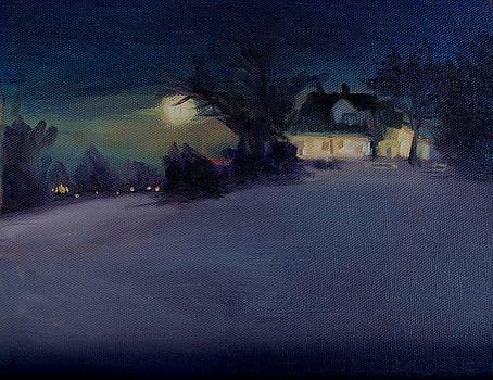 Joyce's Winter Home by Jan Frazier