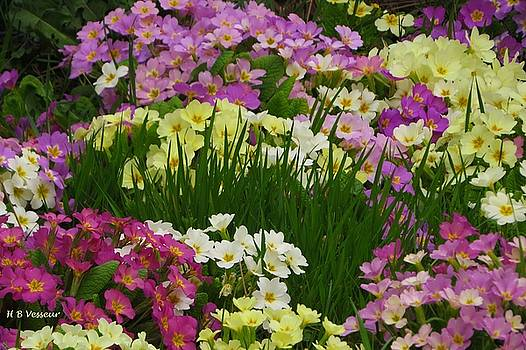 Joyful Colours Of Spring 2 by B Vesseur
