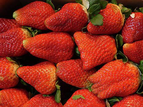 Juicy Red Ripe Strawberries by Marcia Socolik