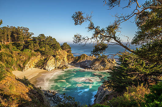 Julia Pfeiffer Burns State Park California by Scott McGuire