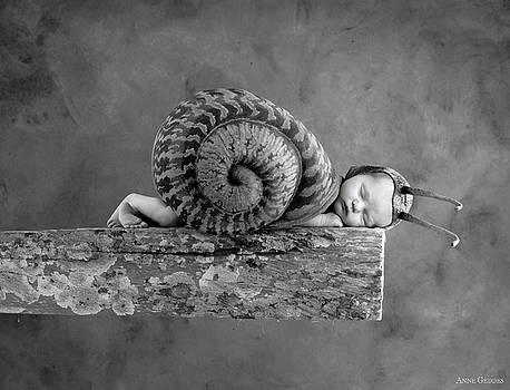 Anne Geddes - Julia Snail