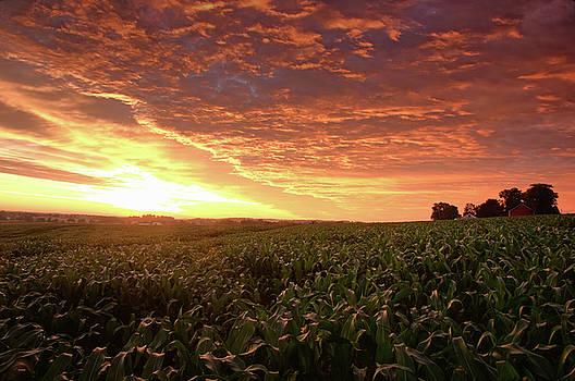 July Sunrise by Dan Myers