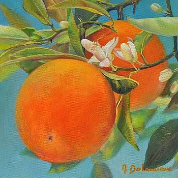 Jumelles Orange by Muriel Dolemieux
