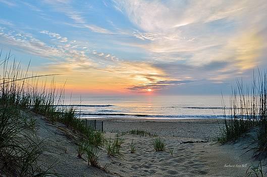June 2, 2017 Sunrise by Barbara Ann Bell