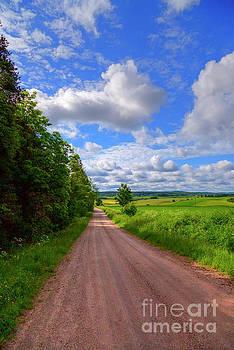 June Countryside by Veikko Suikkanen