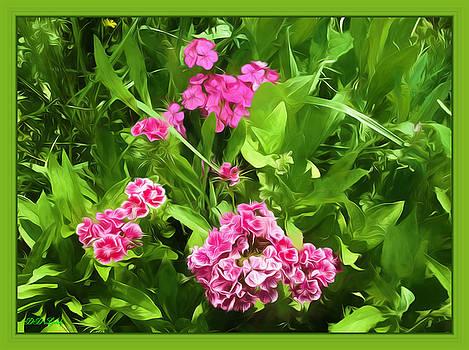 June Flowers by Debra Lynch