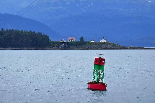 Juneau Buoy by Lawrence Birk