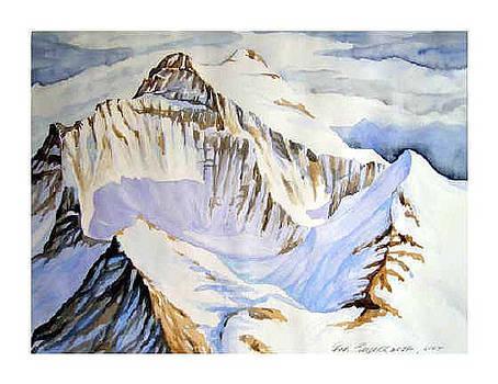 Jungfraujoch by Fritz Engelhardt
