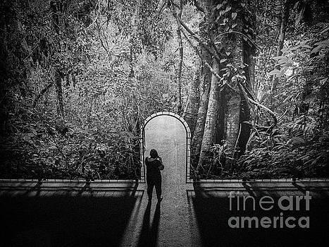 Jungle Entrance by Hans Janssen