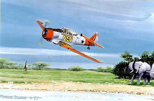 Jungle Flying by Marc Stewart