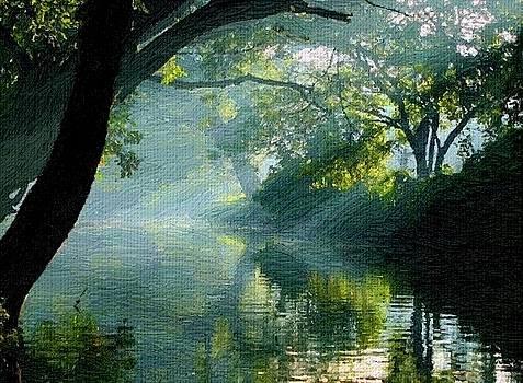 Jungle Morning by Subesh Gupta
