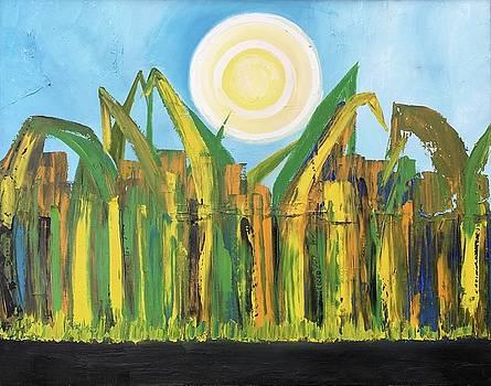 Junin Sugarcane by Adriana Sharpe