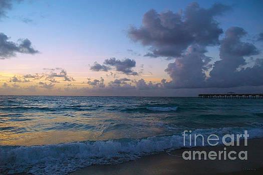 Ricardos Creations - Juno Beach Pier Florida Sunrise Seascape C8