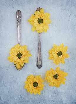 Kim Hojnacki - Just A Spoonful