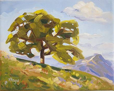 Just a tree by Donna Hays