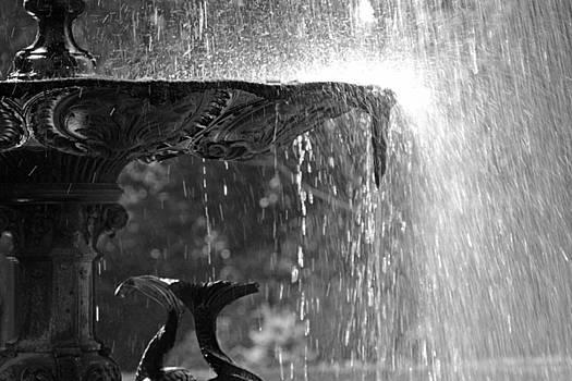 Martina Fagan - Just add water....