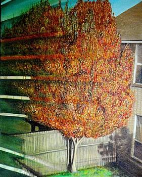 Usha Shantharam - Just Before Fall