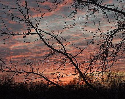 Just Before Sunrise by Carla Neufeld
