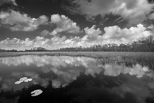 Debra and Dave Vanderlaan - Just Breathe in Black and White