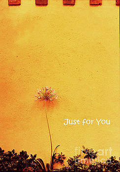 Sharon Williams Eng - Just for You Card