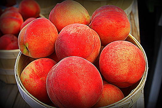 Just Peachy by Suzanne DeGeorge