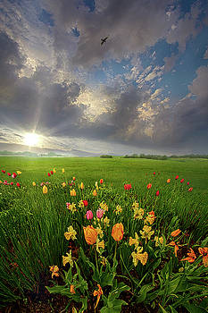 Just to know that you are in my heart to stay by Phil Koch