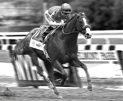 Justify, Belmont Stakes, Triple Crown, 2018 by Thomas Pollart