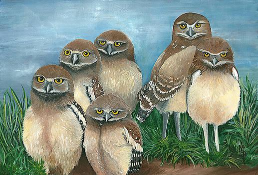 Juven owls by Marsha Friedman