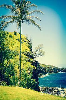 Kahakuloa Beach Palm by Sharon Mau