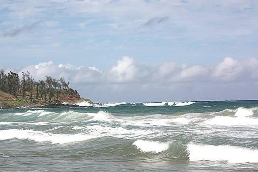 Diane Merkle - Kahili Beach