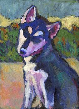 Kaila Puppy by Linda Ruiz-Lozito