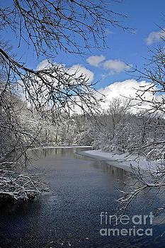 Kalamazoo River by Randy Pollard
