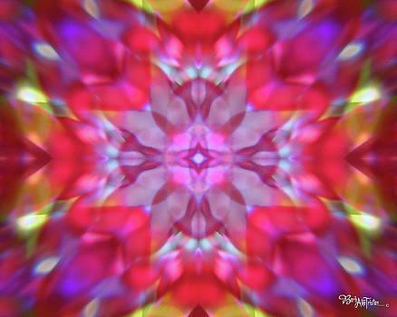 Kaleidoscope #011 by Barbara Tristan