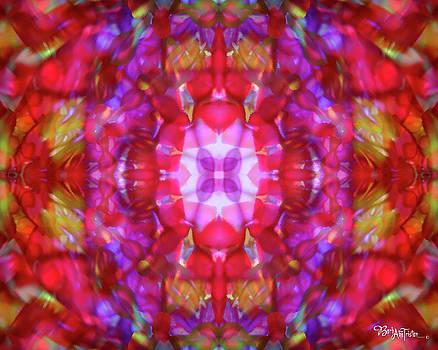 Kaleidoscope #012 by Barbara Tristan