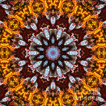 Kaleidoscope in Gold by Marilyn Carlyle Greiner
