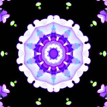 Mike Breau - Kaleidoscope-Series Art-Image 6-1