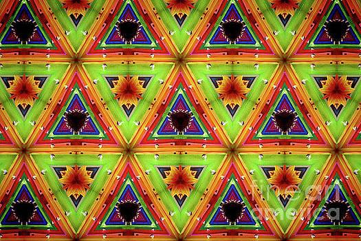 Elizabeth Hoskinson - Kaleidoscope IV