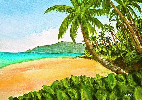 Kamaole Beach Maui Hawaii art painting #349 by Donald k Hall
