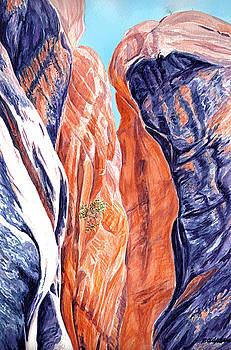 Kanarraville-Falls-Slot-Canyon 2 by Richard W Cleveland
