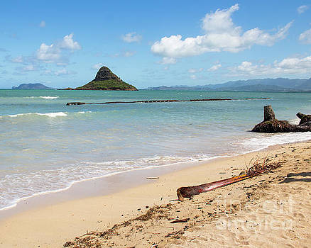 Kaneohe Bay by Cheryl Del Toro