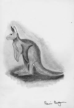 Kangaroo Drawing by Naomi Burgess