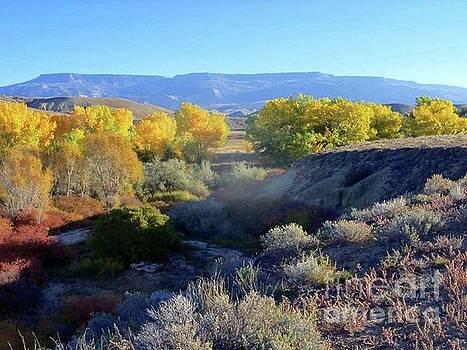 Kannah Creek by Amber Whiting Bradley