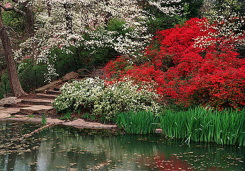 Kansas City Gardens by James Rasmusson