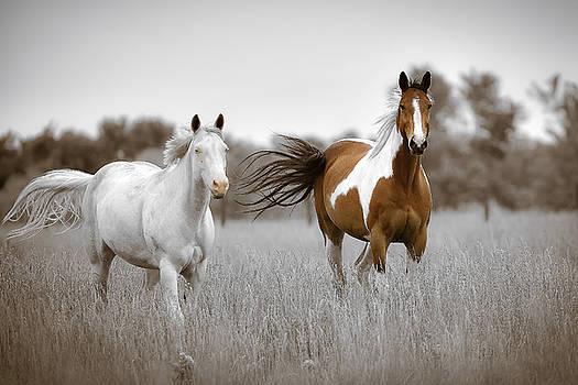 Kansas Wind by Garett Gabriel