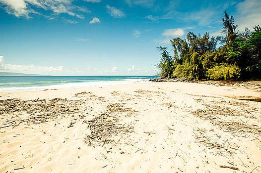 Kapalua Beach Honokahua Maui Hawaii by Sharon Mau