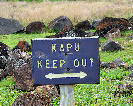 Kapu Keep Out Sign by Catherine Sherman